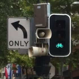 Look hard upon this green light, for if you heed not my advice, you shall never see it in the wild