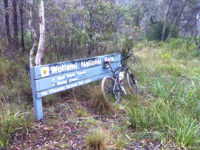 Speedfox at Wollemi National Park Entrance